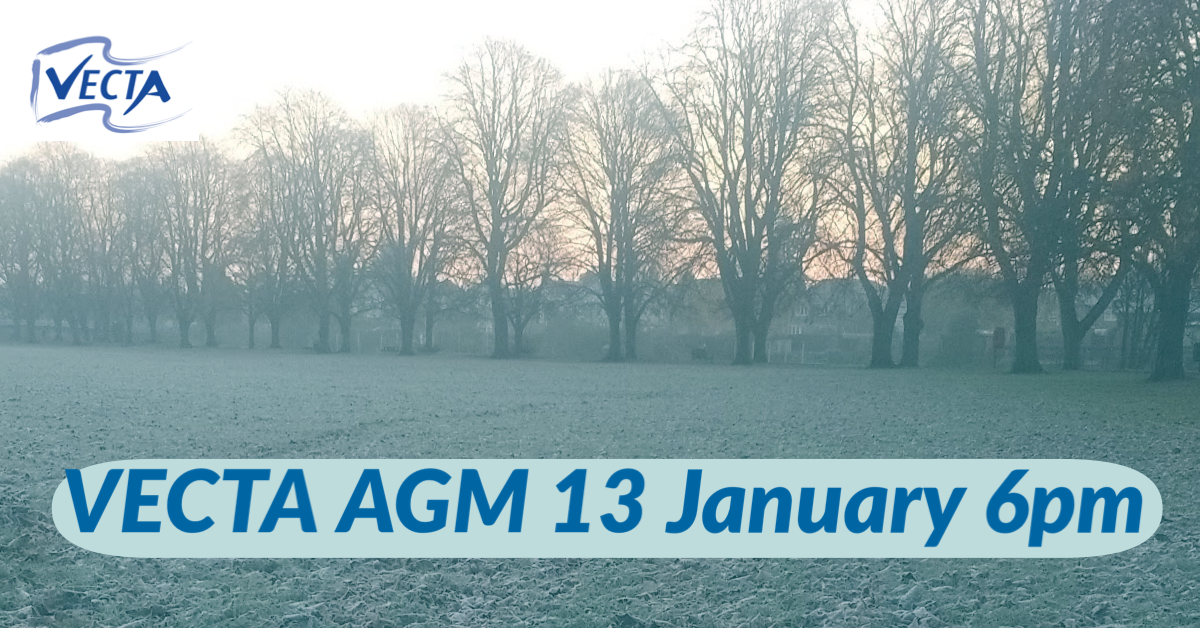 VECTA AGM 13 January 2021